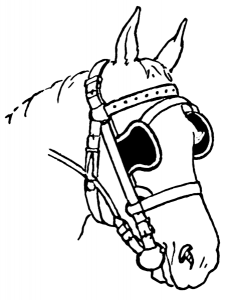 horse_with_blinders[1]