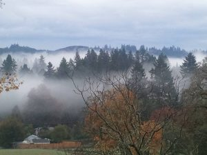 west-linn-fog